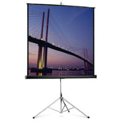 Экран Projecta Picture King 124 x 213 cm Matte White 16:9
